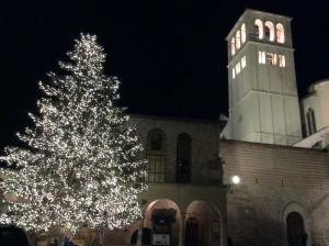 Natale basilica san francesco Assisi